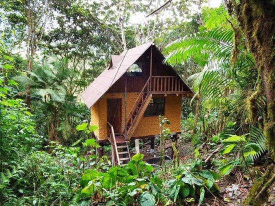 Urcu de Mindo Cloud Forest Eco-Lodge: huts