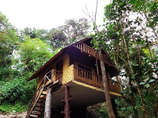 Urcu de Mindo Cloud Forest Eco-Lodge: tree huts