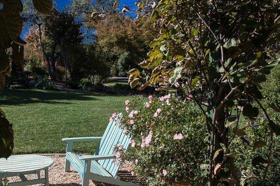 The Madrones: Jim's garden