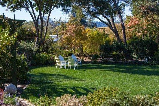 The Madrones : Jim's garden