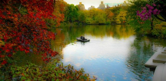Central Park Sunset Tours: On the lake
