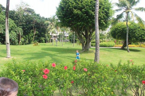 Shangri-La's Mactan Resort & Spa: сад