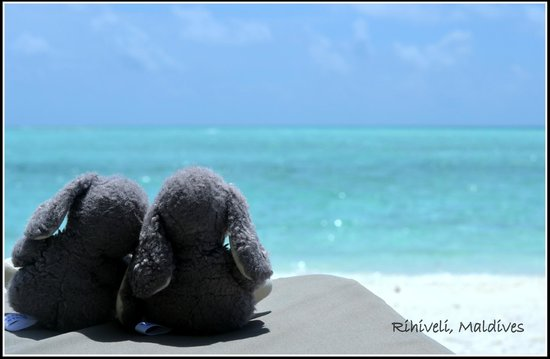 Rihiveli by Castaway Hotels & Escapes: Travel couple rabbit