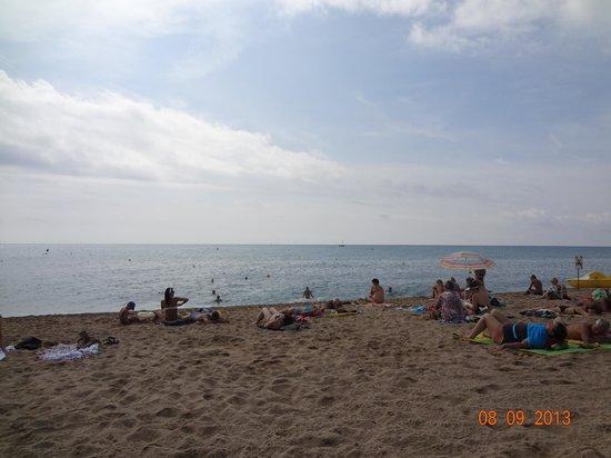 Hotel Kaktus Playa : Муниципальный пляж