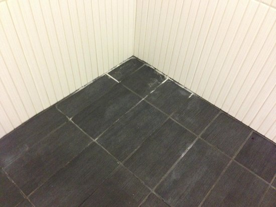 Aloft Cupertino: Molding tile/grout in shower.