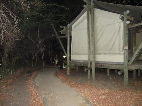 Tamboti Satellite Camp : 'Tent'