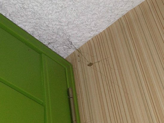 Hotel Maya - a DoubleTree by Hilton Hotel: Dusty cobwebs in corner and on walls.