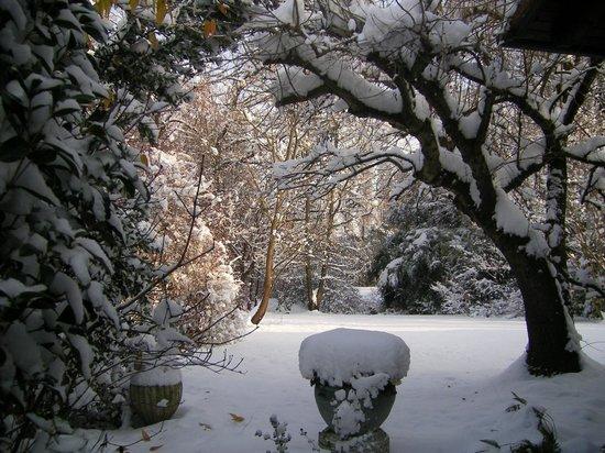 B&B Il Pettirosso: Giardino con la neve
