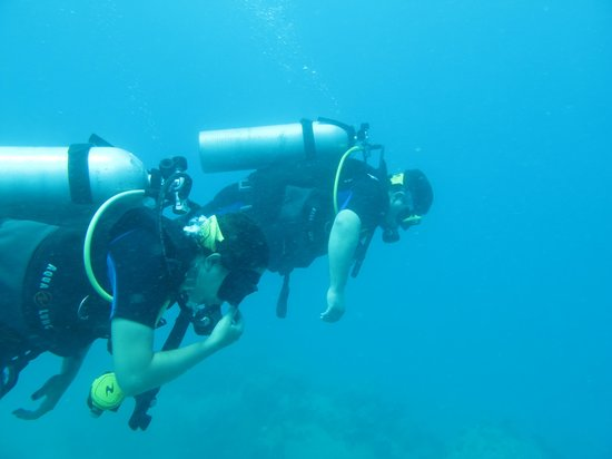 Ihasia Diving Koh Tao: Open water