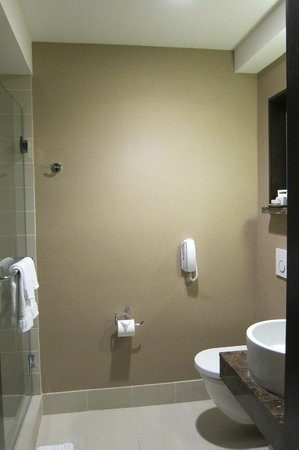 The Orlando Hotel: Rm 322 bathroom
