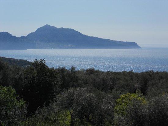 Tenuta Montecorbo: La stupenda vista su Capri