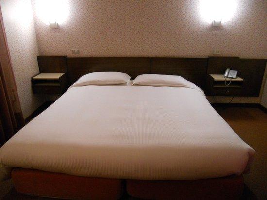 Hotel Brescia: Camera