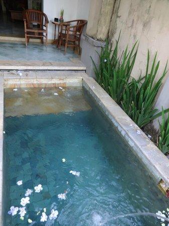 Alam Puri Art Museum & Resort: poll in fron of private villa