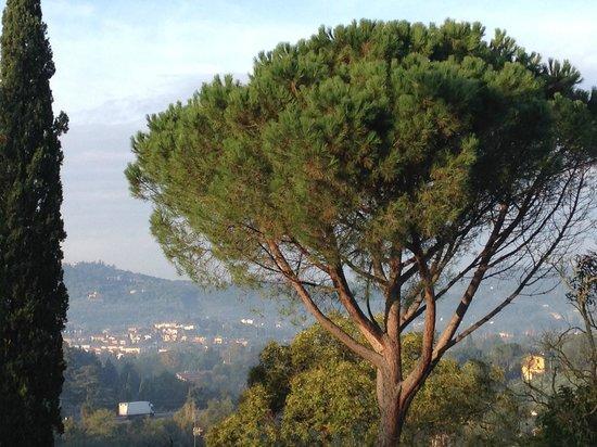 Casa Volpi: Blick aus dem Fenster
