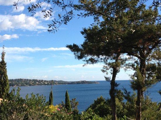 Residence U Paviddonu : Vue de la terrasse