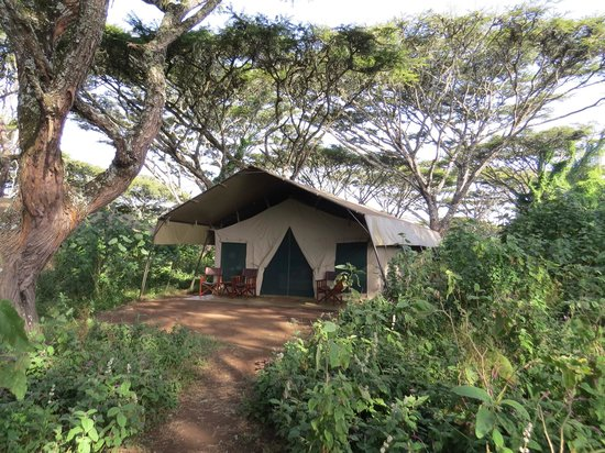 Lemala Ngorongoro Tented Camp: Tente