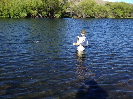 Malleo River: Pescando en el Malleo