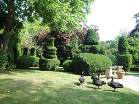 The Lynch Country House: Gardens