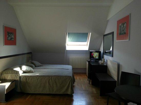 Hotel Praga 1 : stanza ultimo piano / vista tetti