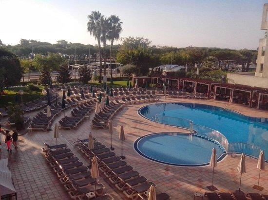 Hotel Florida Park : Piscine
