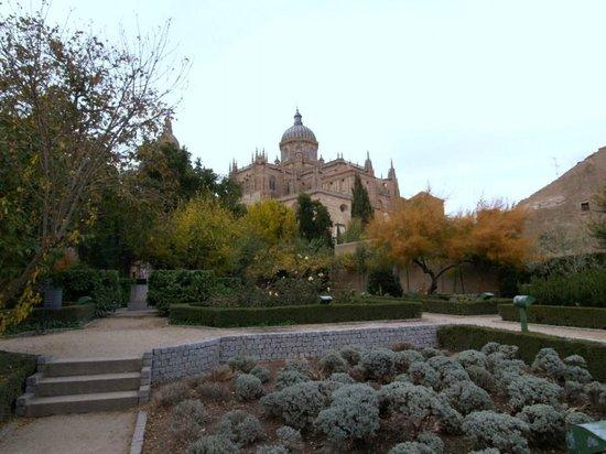 Una vista de la catedral de salamanca desde el huerto de calixto y melibea fotograf a de jard n - Jardin de calisto y melibea salamanca ...
