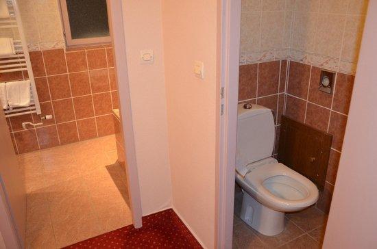 l'Alexain Hotel Restaurant : 08 L'ALEXAIN ch 12 toilettes