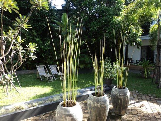 maison557 : Garden