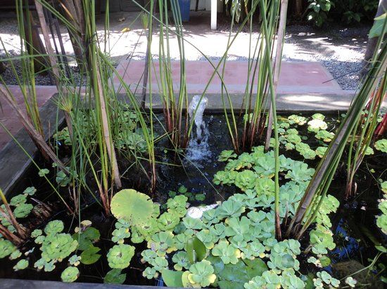 maison557 : Serenity fountain and pond