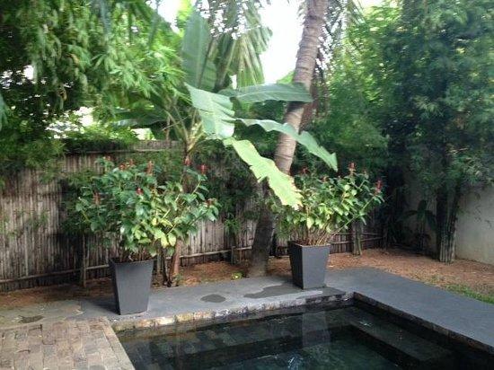 maison557: Private pool