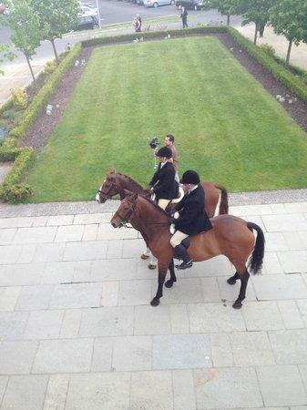 Tulfarris Hotel and Golf Resort : Wedding Horses