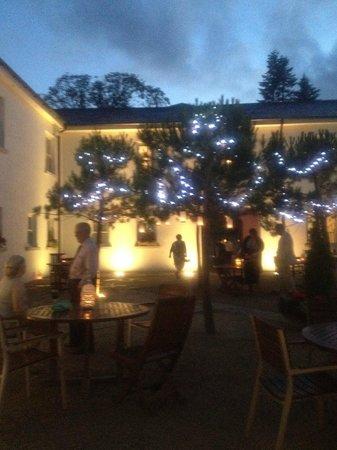 Tulfarris Hotel and Golf Resort: Courtyard