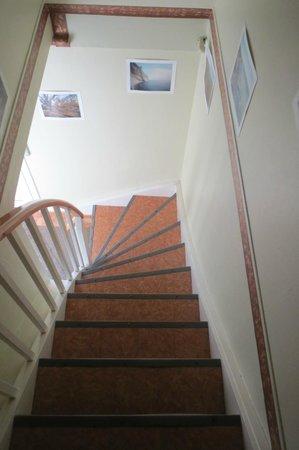 Tohøjgaard Bed & Breakfast: Stairs down to front door/bathroom
