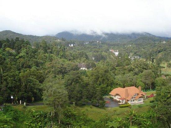 Hotel De' La Ferns: View from Hotel 1