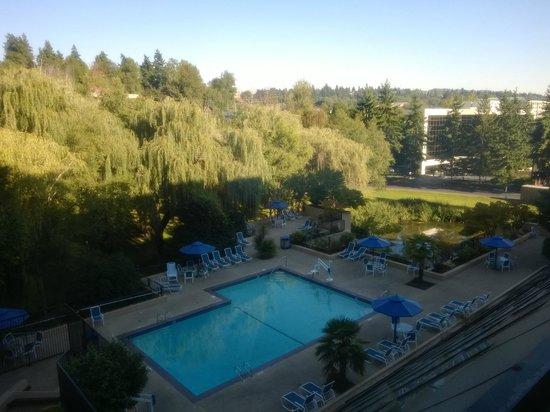 Hilton Bellevue Hotel: Открытый бассейн