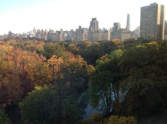 The Ritz-Carlton New York, Central Park: It's worth getting a room with a view of the Park!