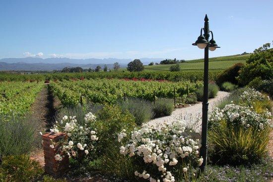 Fraai Uitzicht Restaurant: Beautiful Gardens