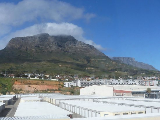 DoubleTree by Hilton Cape Town - Upper Eastside: view from hotel rom