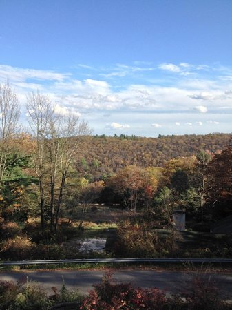 Pocono Manor Resort & Spa: View from our room