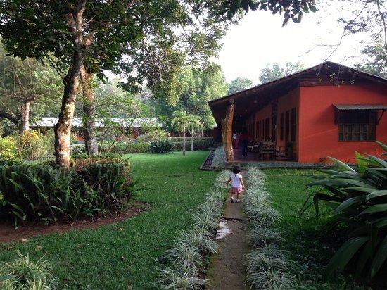 Santa Leticia: Jardines