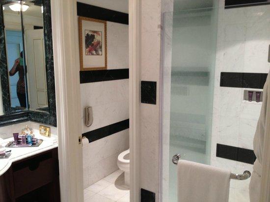 The Ritz-Carlton, Doha: Separate shower / toilet area
