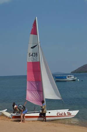 Danforth Yachting: One of the 3 catamarans