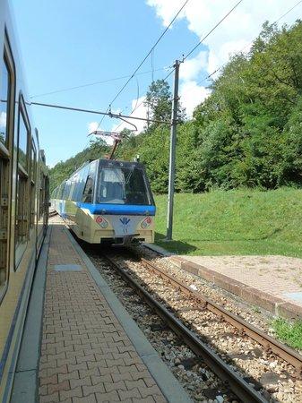 Vigezzina-Centovalli Railway : Train