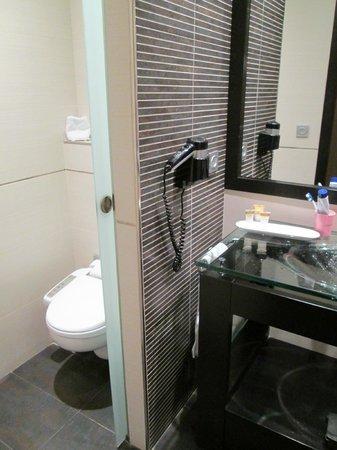 Abades Nevada Palace: WC und Waschbecken