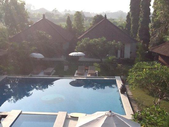 Villa Adinda: het zwembad met gedeelte tuin