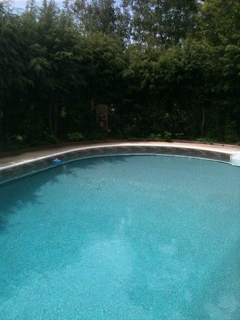 Apple Knoll Inn: The Sparkling Pool during the warmer months