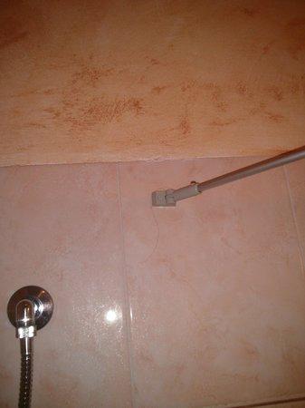 Hotel Euro House Inn: Hair in the bathroom!