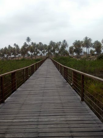 "Grand Palladium Imbassai Resort & Spa : Estrada que leva ao ""paraiso"""