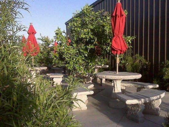 Casa Grande, AZ: Lovely patio :)