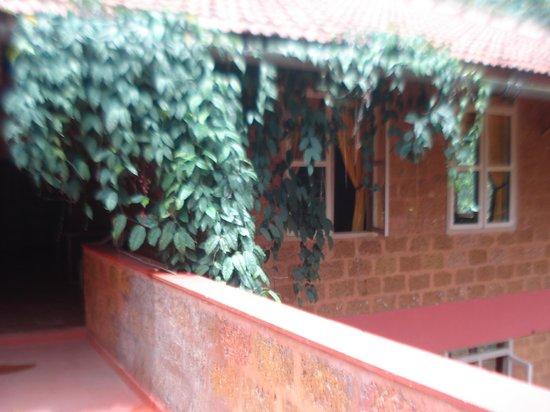 Chingaara Estate Guest House: Terrace