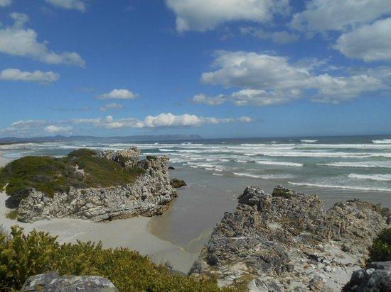 Grotto Beach: Vue océan